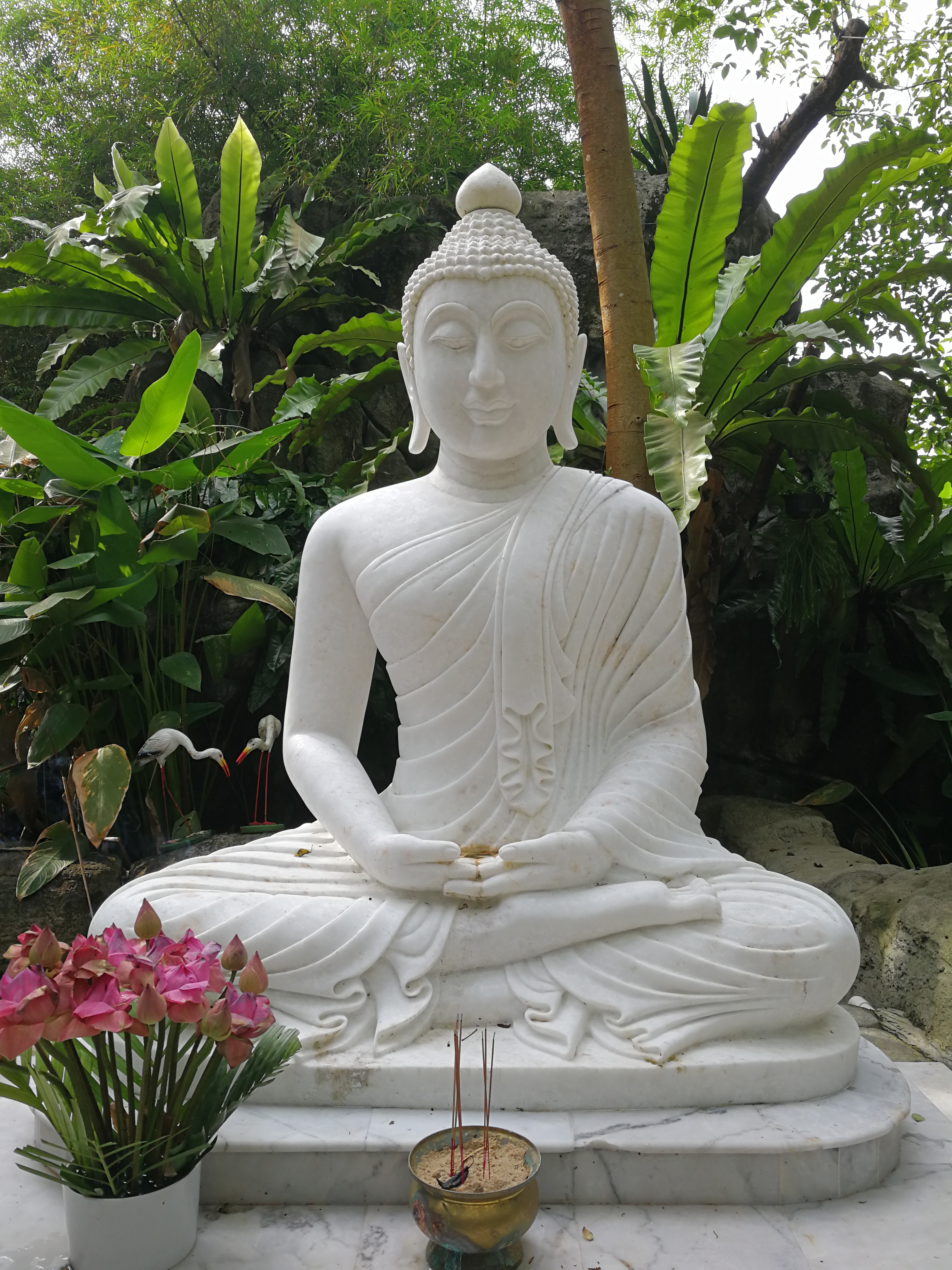 Have you ever wondered about the meanings of buddha mudra buddha in dhyana mudra biocorpaavc Choice Image